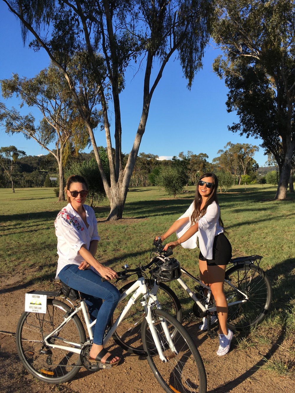 Brisbane wine tour (bikes)