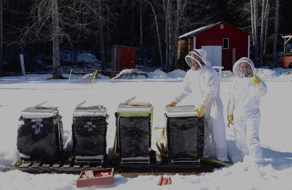 Our Bees Made The Winter We Were So Excited!!!