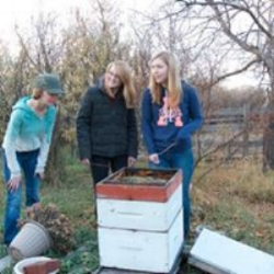 Courtney And Her Sisters With Their Very First Bee Hive