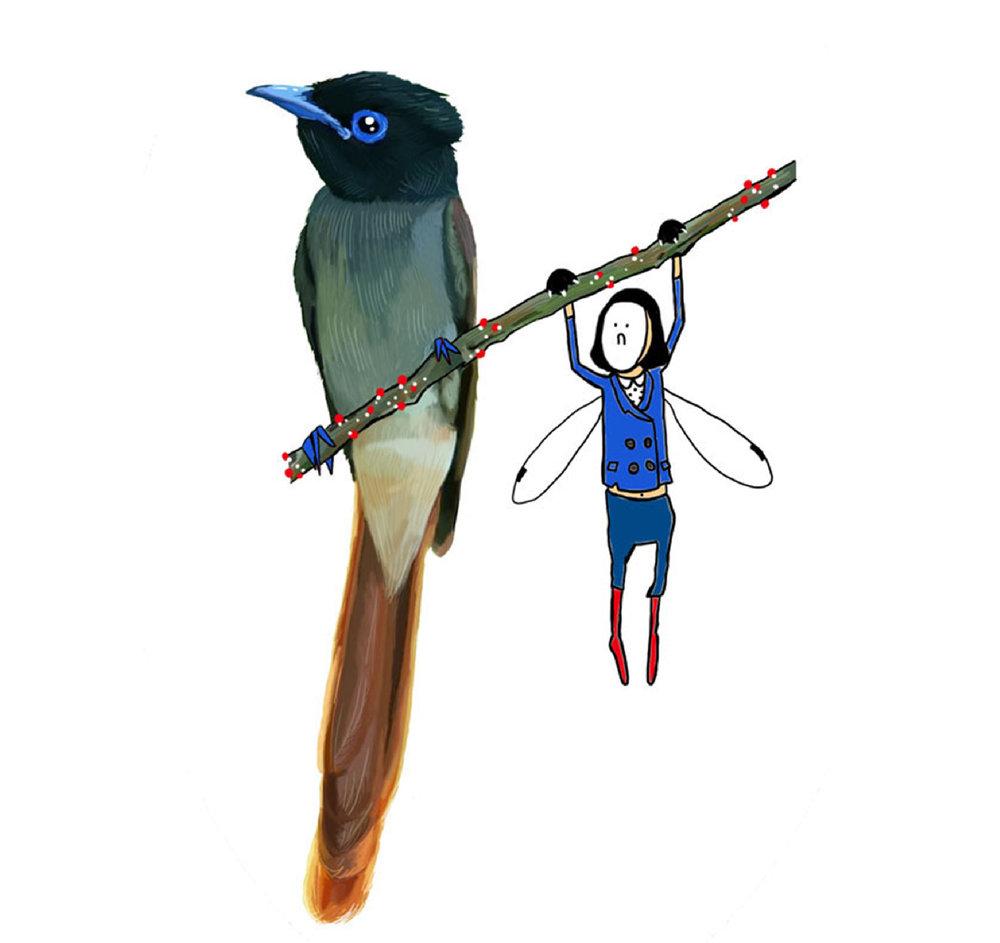 birds_girk3-01.jpg