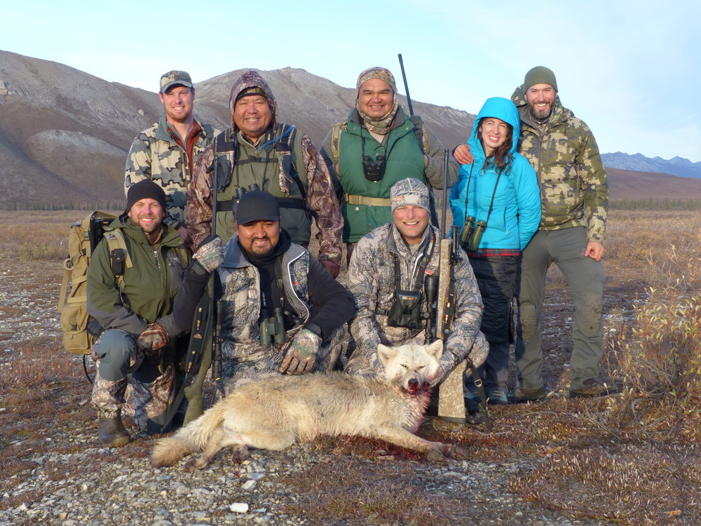 The group at camp with the first wolf of the season.  Front row (from L-R): Nate, our packer; Kanim; Scott  Back row (from L-R): Jeff, our guide; Randy; Pat; Alexandra and Lyle, owner and outfitter