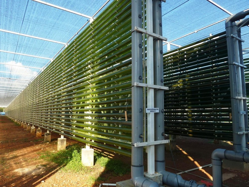 ALGAE FARMING RE-DESIGN