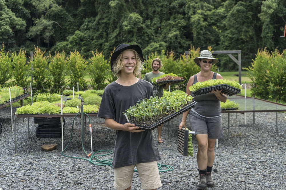 Kian, Luke and Hayley (Left to right) from Seedlings Organic.