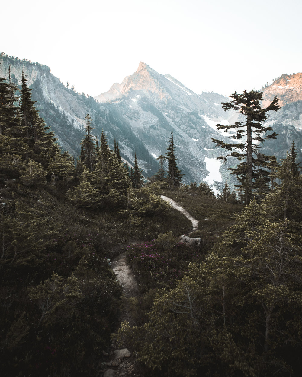 trails lead the way_.jpg