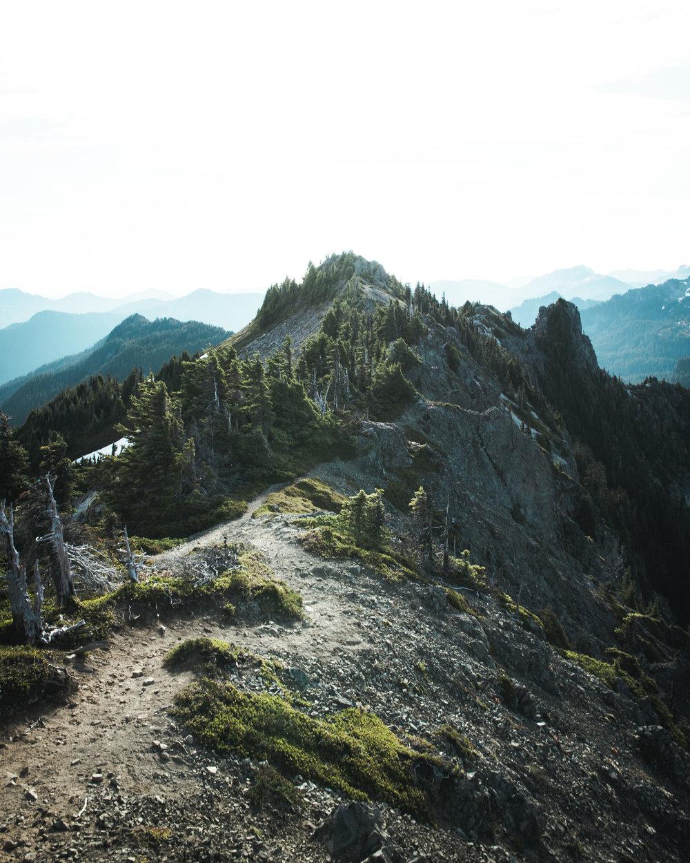 Tolmie peak hike-22.jpg