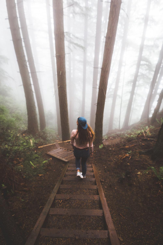 rock trail fog_-7.jpg