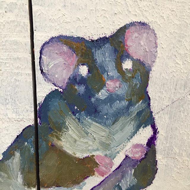 An Aussie possum.... in Helsinki? #possum #oilpaint #cupboardcanvas