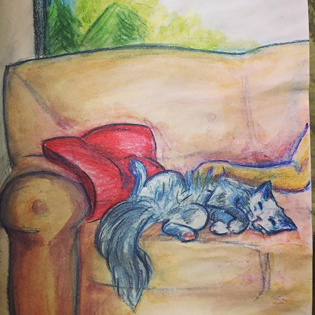 Fluffy cat is safe and warm. #watercolourpencils #cat