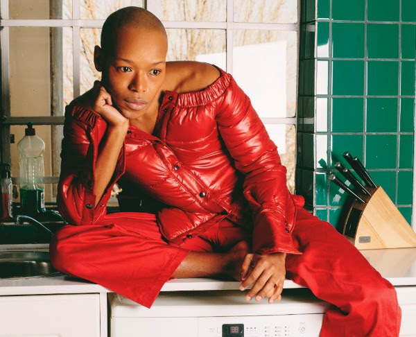 nakhane press shot.jpg