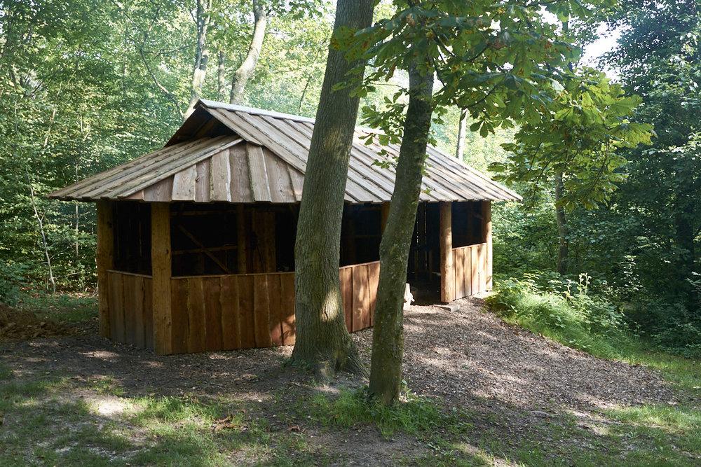 shelter-web-1201.jpg