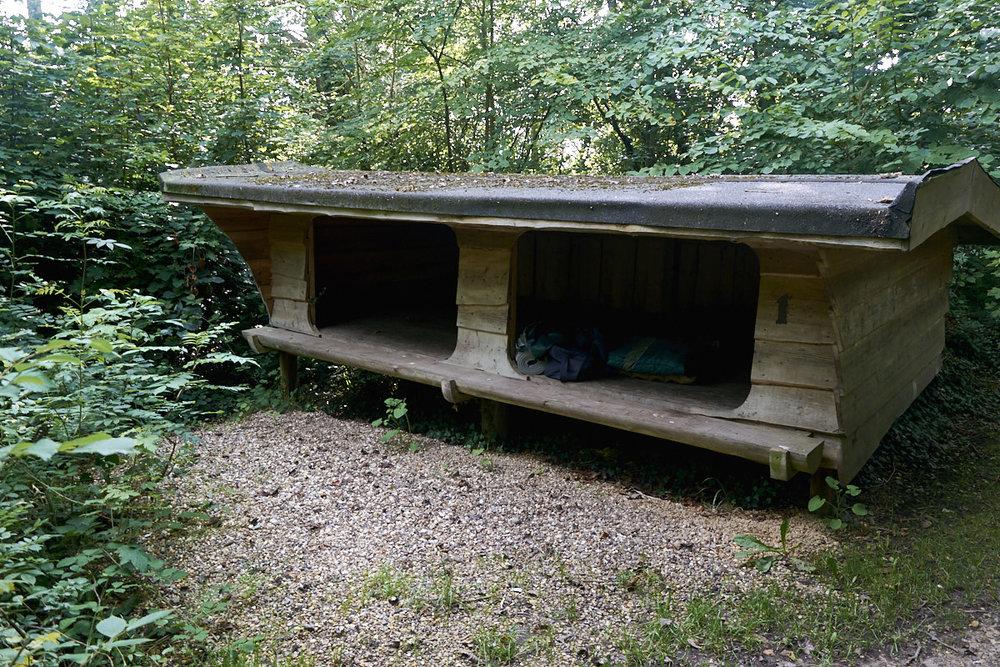shelter-web-1253.jpg