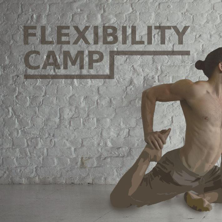 flexibility camp sq.jpg