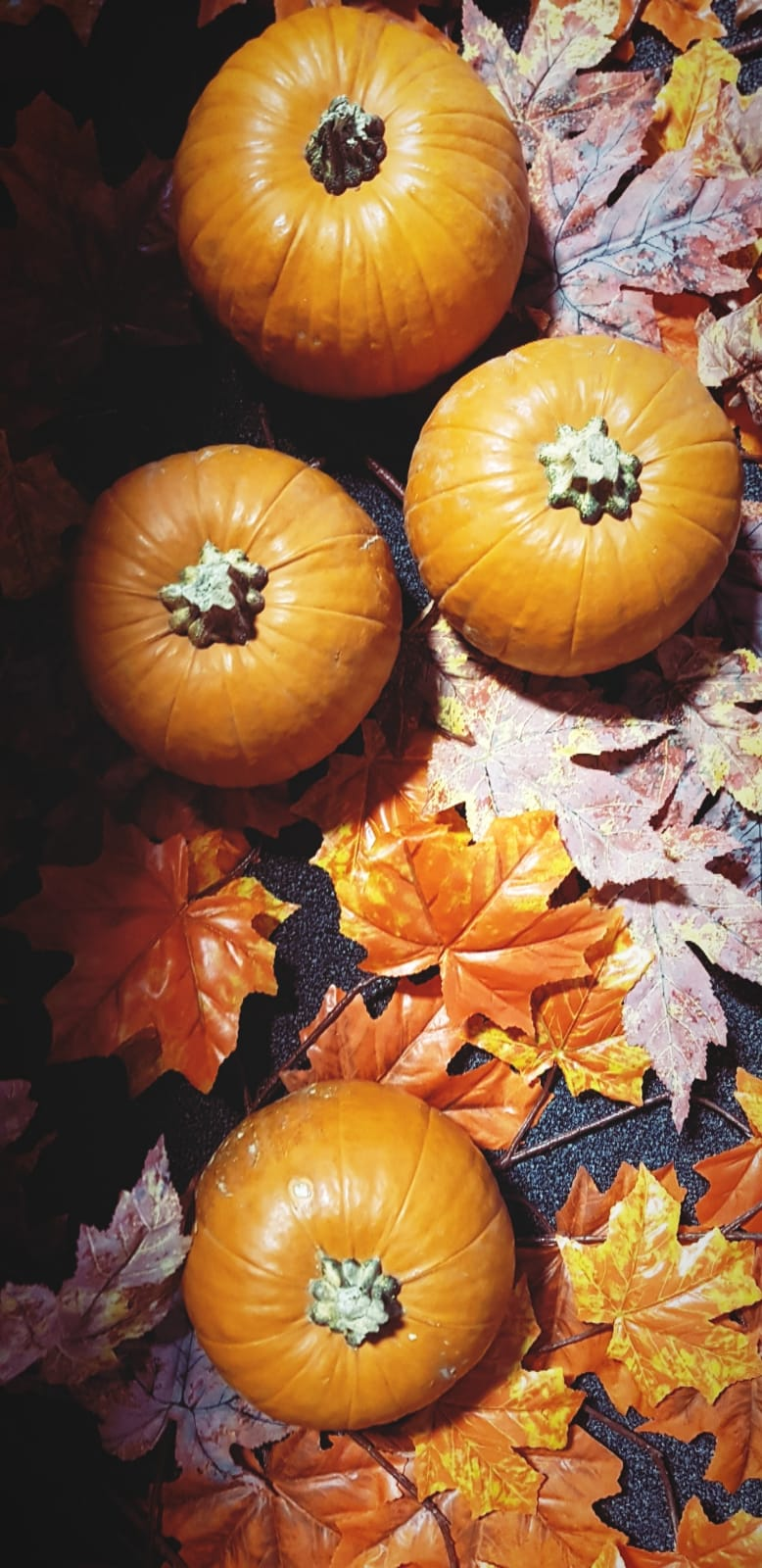 Is it even possible to have too many pumpkins?
