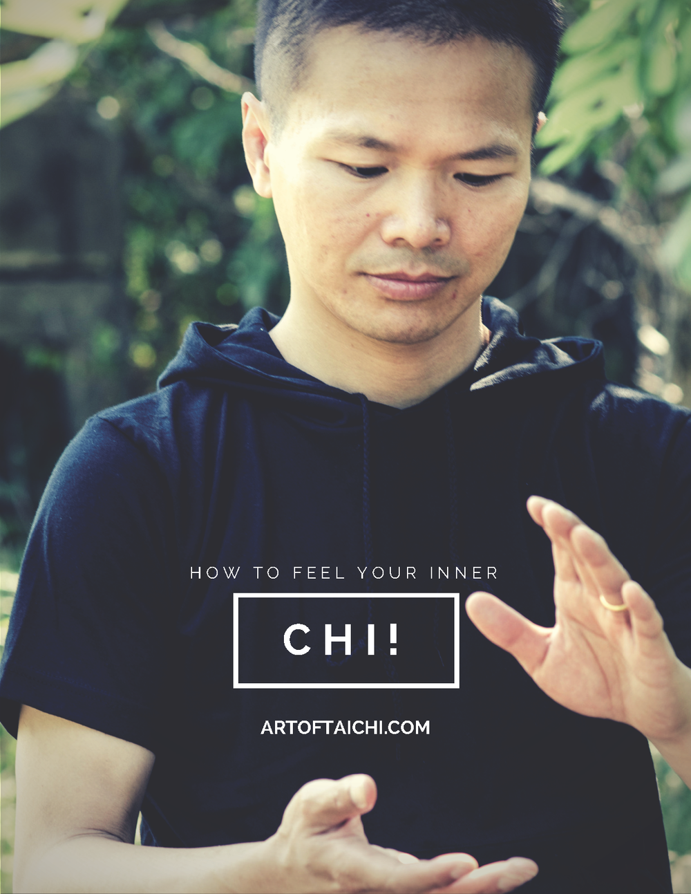 Free Guide By Irving Yee @ Art of Tai Chi