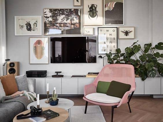 самые красивые комнатные растения интернета