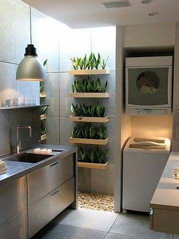 комнатные растения - один из лучших способов заполнить пустой простенок  источник