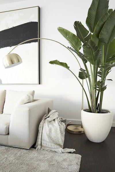 современные раскладные диваны в интерьере  источник