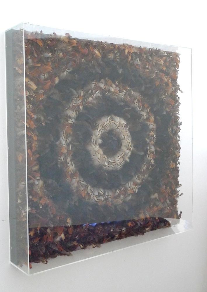 120 x120cm  Feathers, polyurethane, wood frme