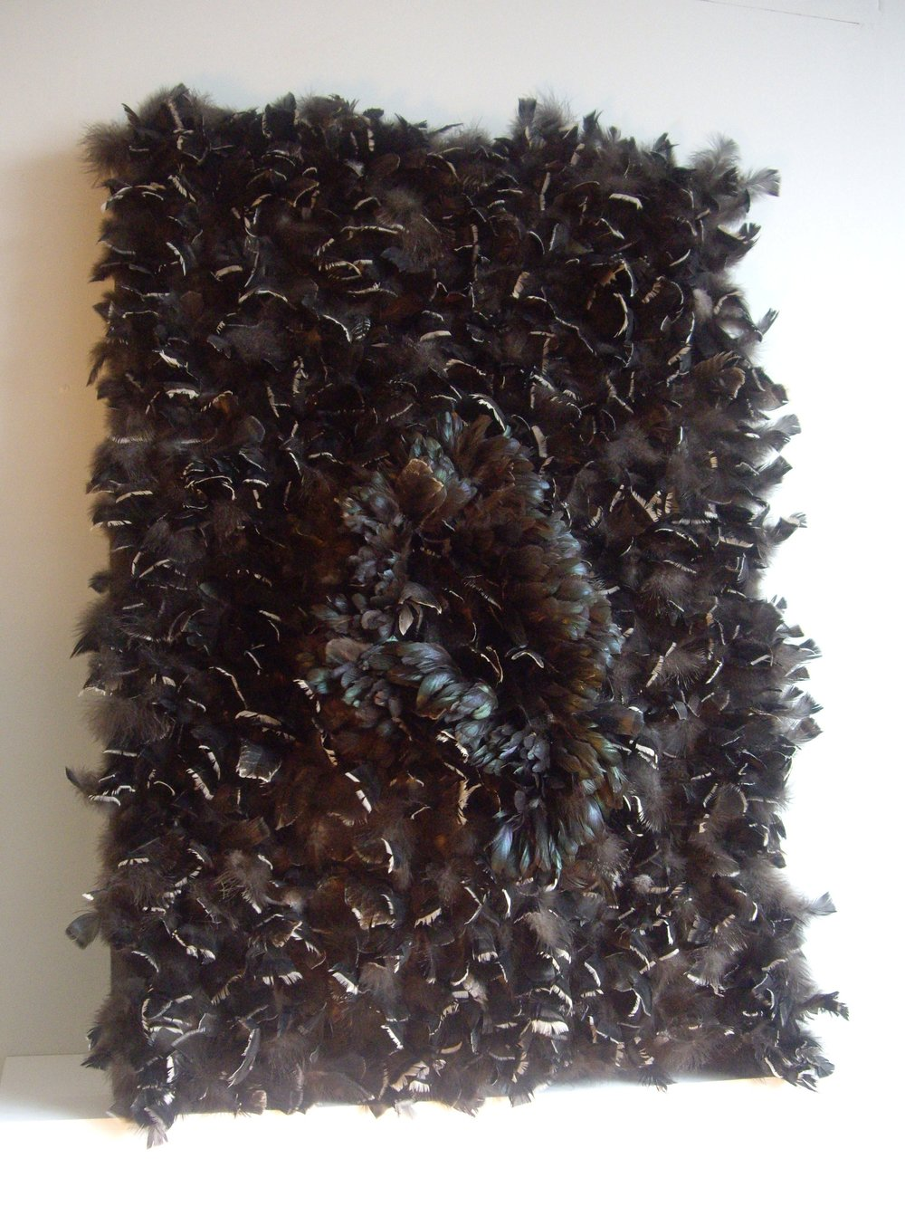 100 x 130cm  Feathers, polyurethane, wood frame