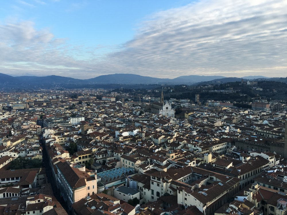 Florence from above.
