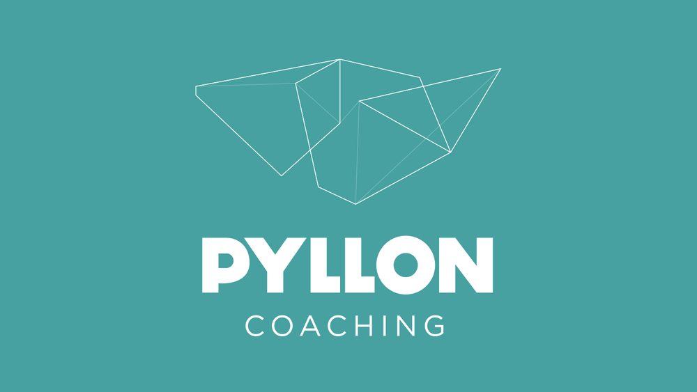 Pyllon_Coaching.jpg