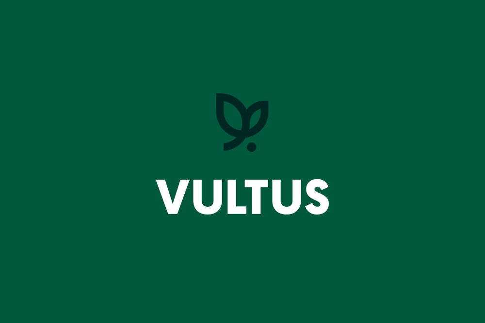 Style-Guide-Display-Vultus-Logo.jpg