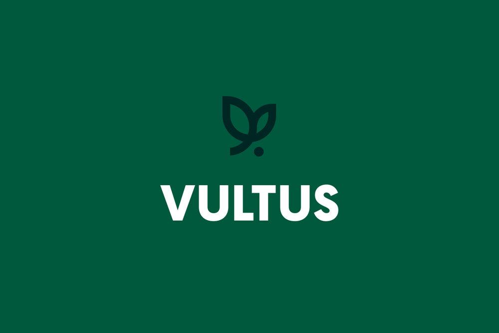 Style-Guide-Display-Vultus-Logo.jpg