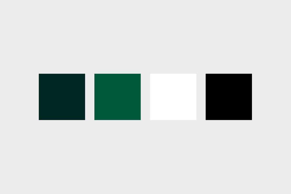 Style-Guide-Display-Vultus-Colors.jpg