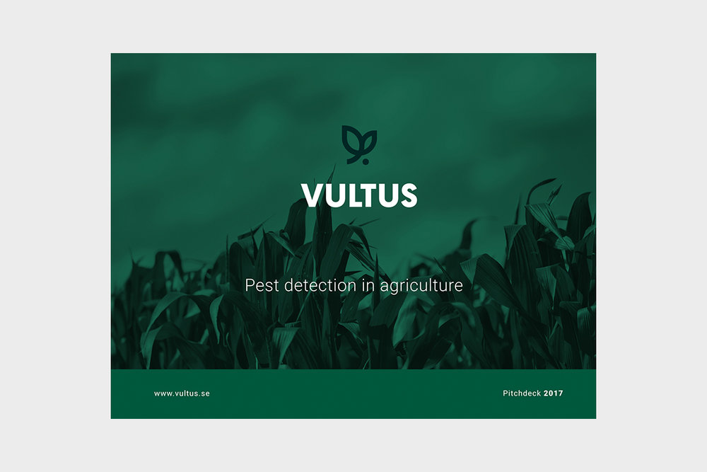 Style-Guide-Display-Vultus-Presentation.jpg