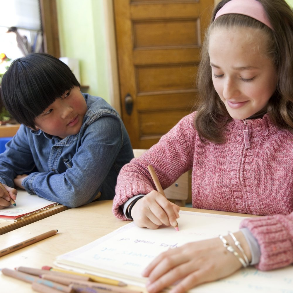 Since the founding of our high school in the fall of 2010, Monadnock Waldorf School has funded students' tuition assistance needs, averaging $200,000 annually, through simple tuition reduction.  It became clear that this model was not sustainable since the need for tuition assistance is not likely to diminish and the number of capable and deserving students is increasing.  We remain committed to making a Waldorf high school education accessible to the students dedicated to it.  The Greater Opportunity Fund was established in the fall of 2013 to provide a reliable pool of tuition