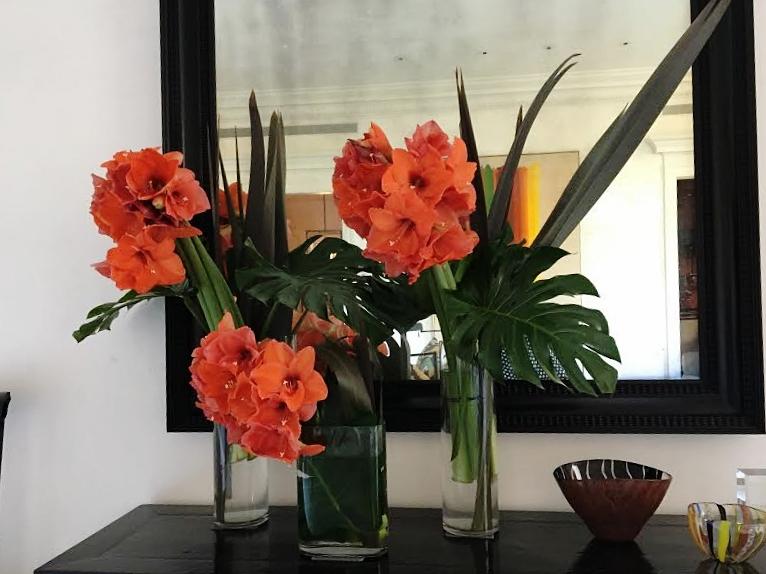 Florealpic_home4.jpg