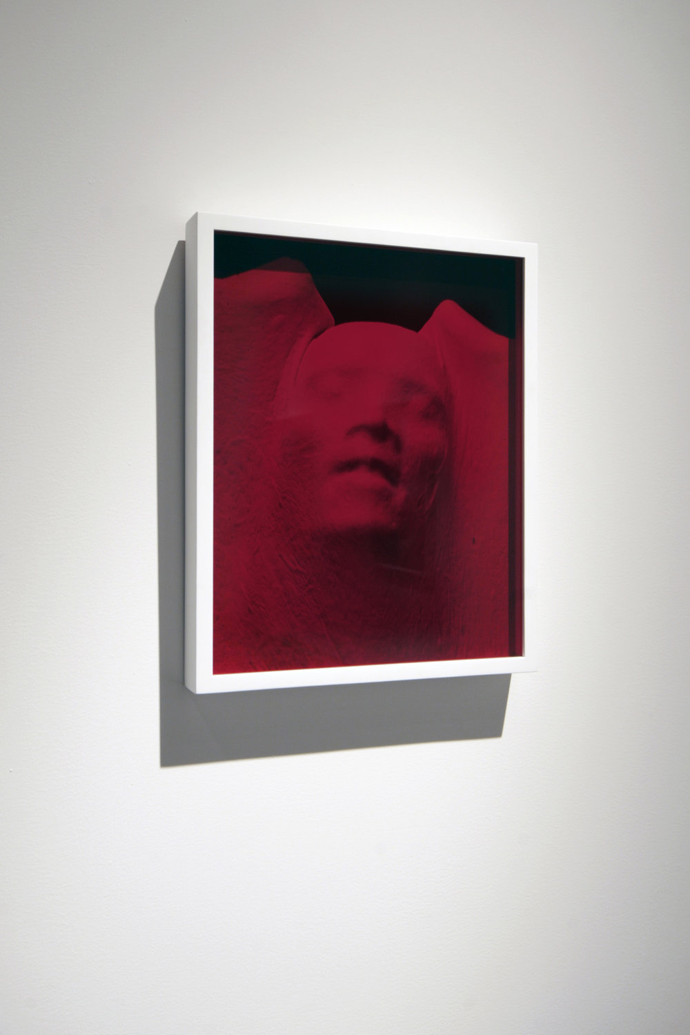 "Proud Flesh  (2011), chromogenic print and glass, 15"" x 12"""