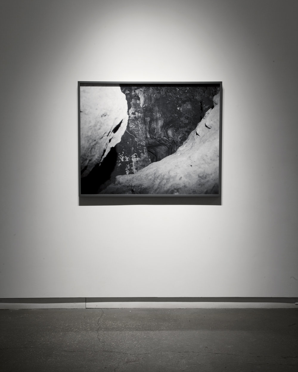 "Virginia  (2013) chromogenic print; 44"" x 38""  Installation view of  Medusa  at Daniel Faria Gallery, Toronto, Canada"