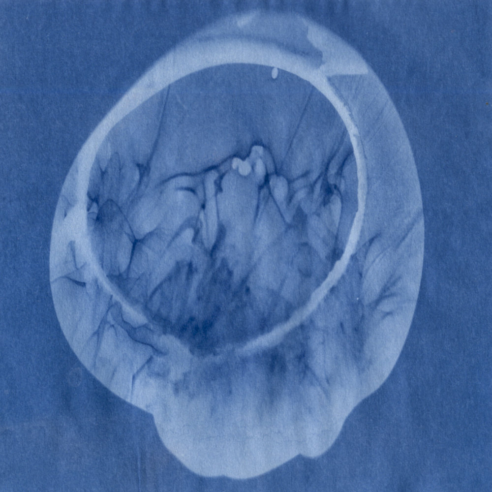 "This and all images below: Mays Albaik, from the series ""Recordings, Translated,"" 2017, cyanotype prints"