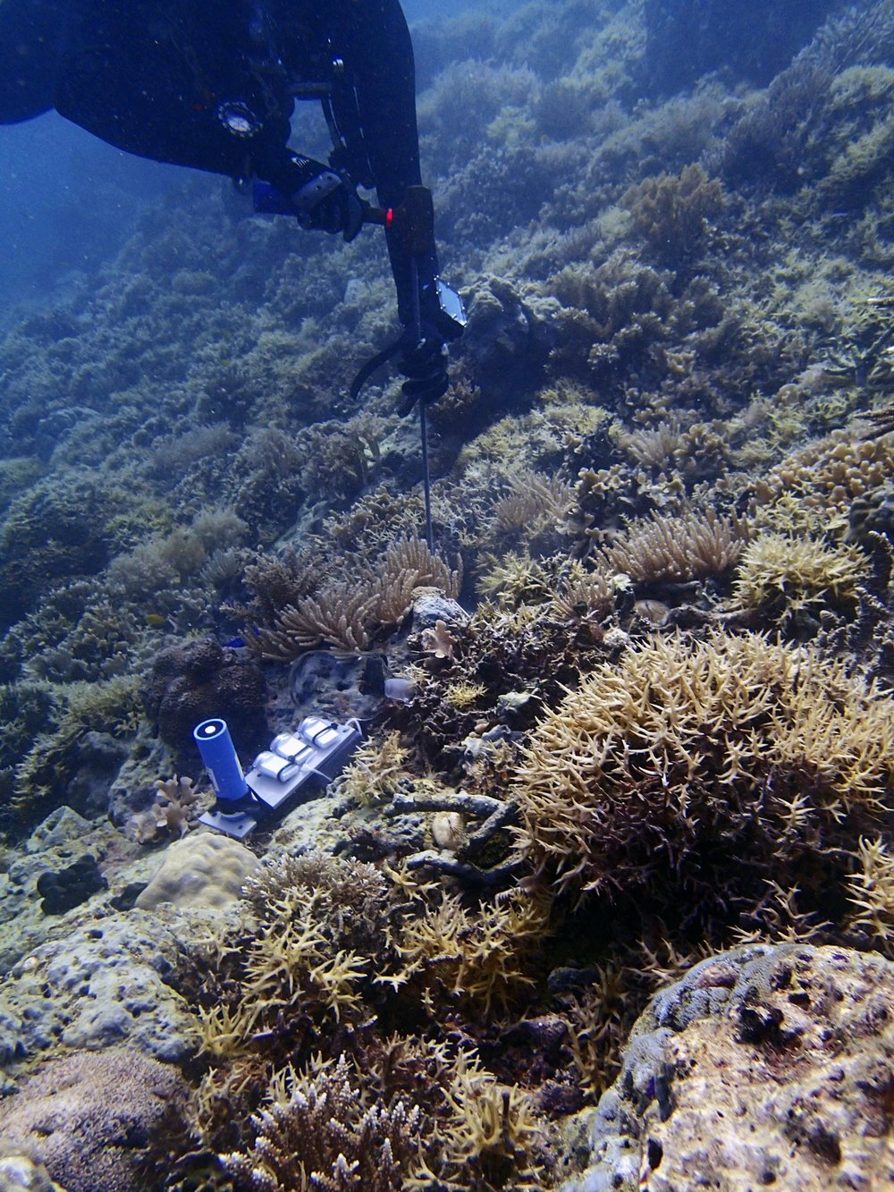 deploying meters in Palau.jpg