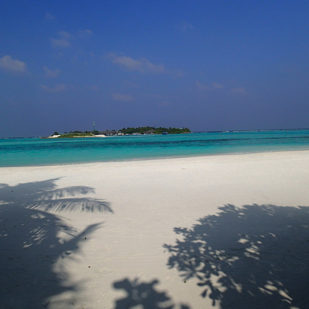 beach at Dhigu.JPG