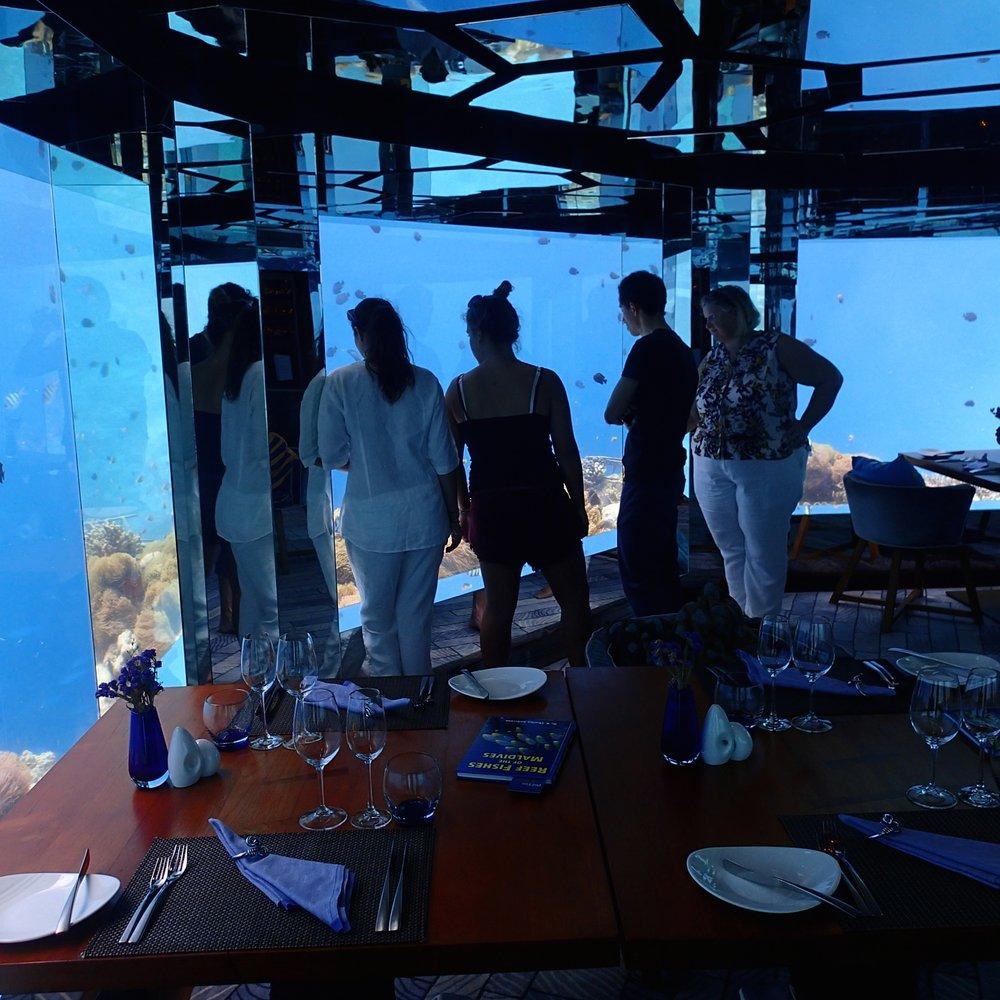 underwater restaurant.jpg