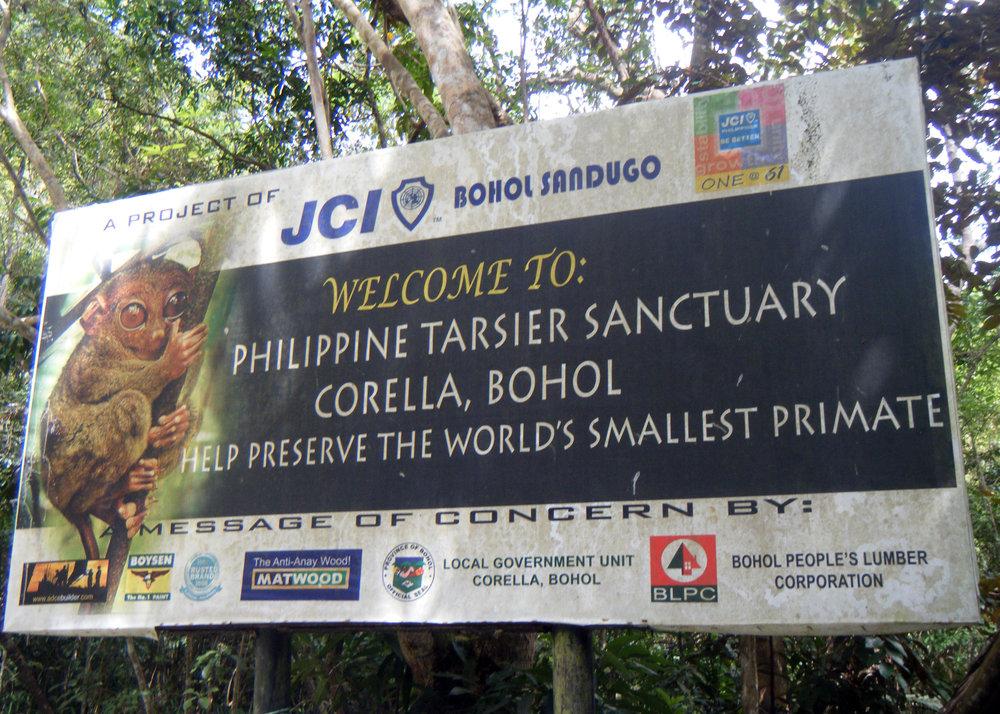 Philippine tarsier sanctuary.jpg
