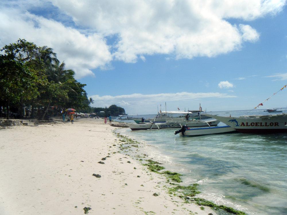 Alona Beach on Panglao Island.jpg
