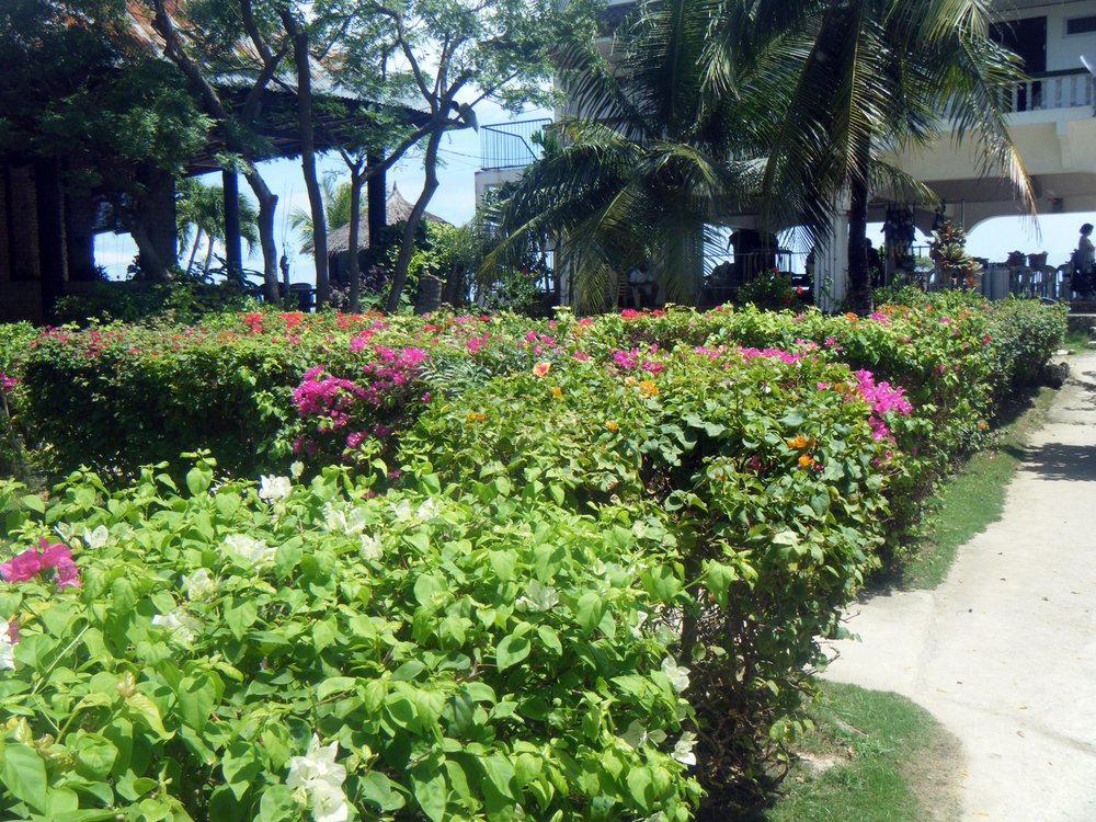 Kon Tiki Resort.jpg