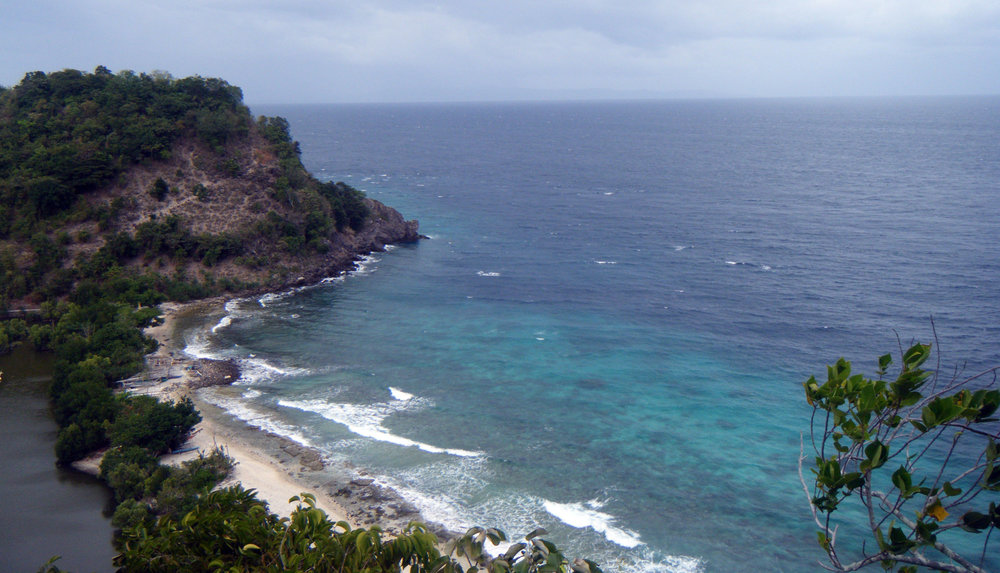 Apo Island Marine Sanctuary.jpg