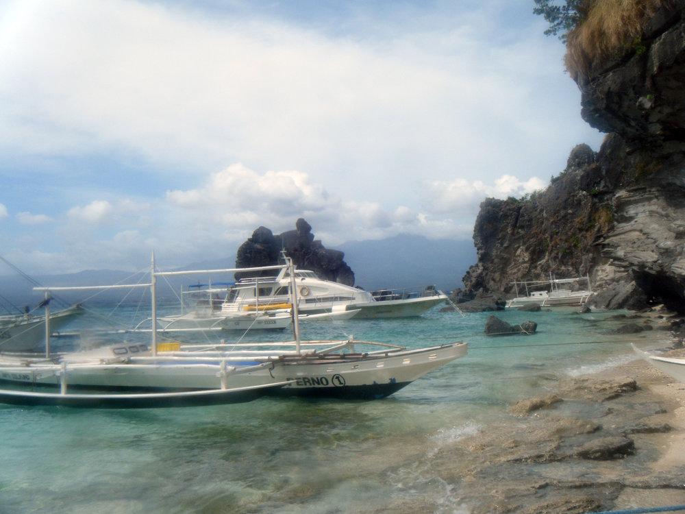 Apo Island Negros.jpg