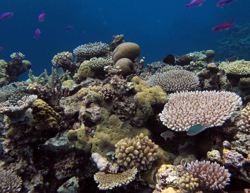 heaven underwater.jpg