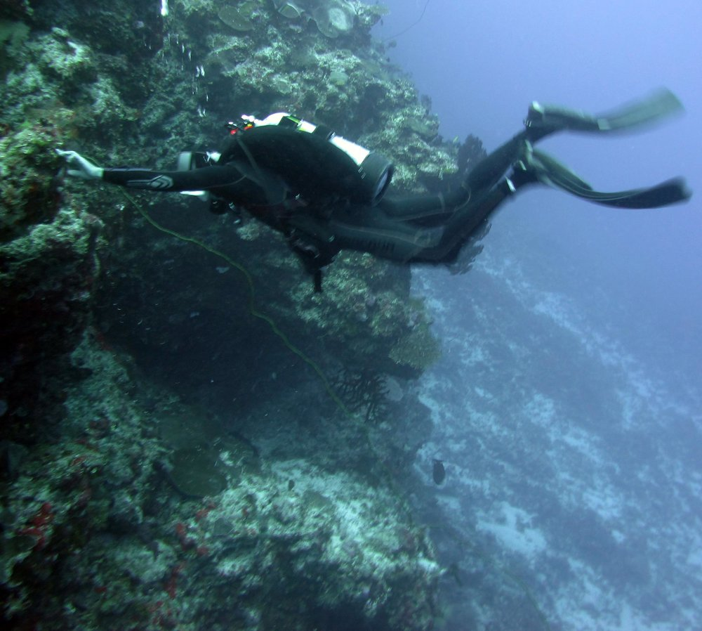 Joao and black coral.jpg