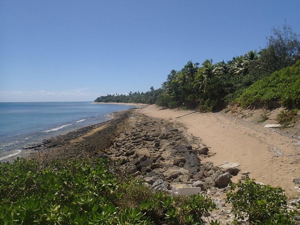 pristine beach 2.JPG