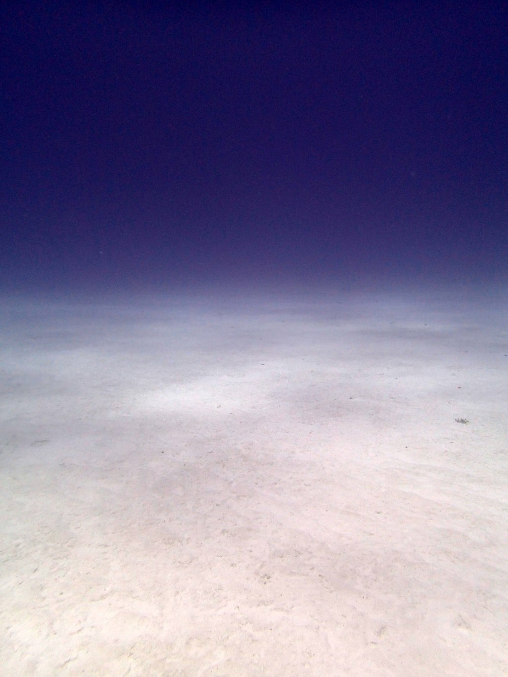 sand patch.jpg