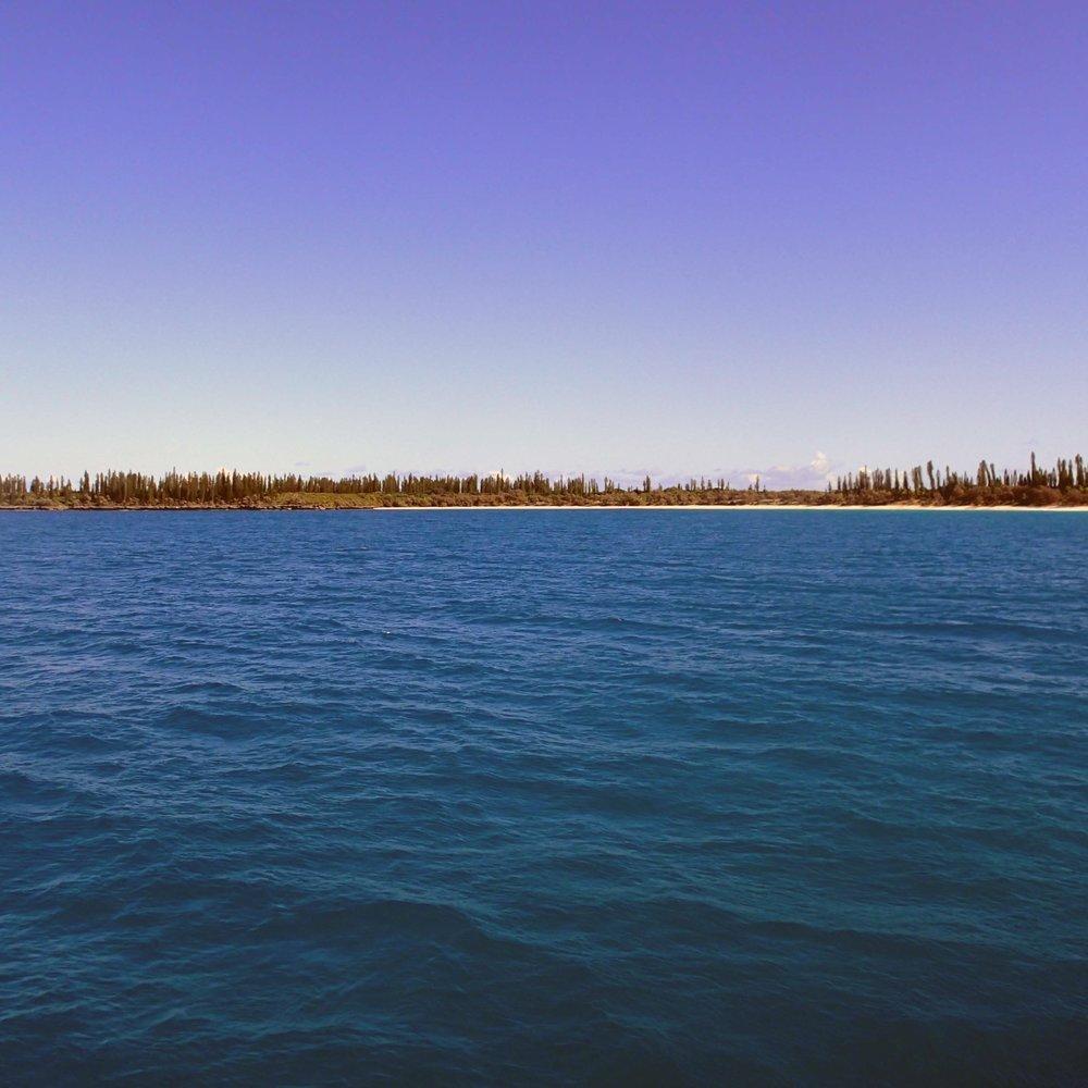 Pine Island.jpg