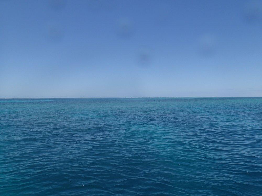 perfect seas.jpg