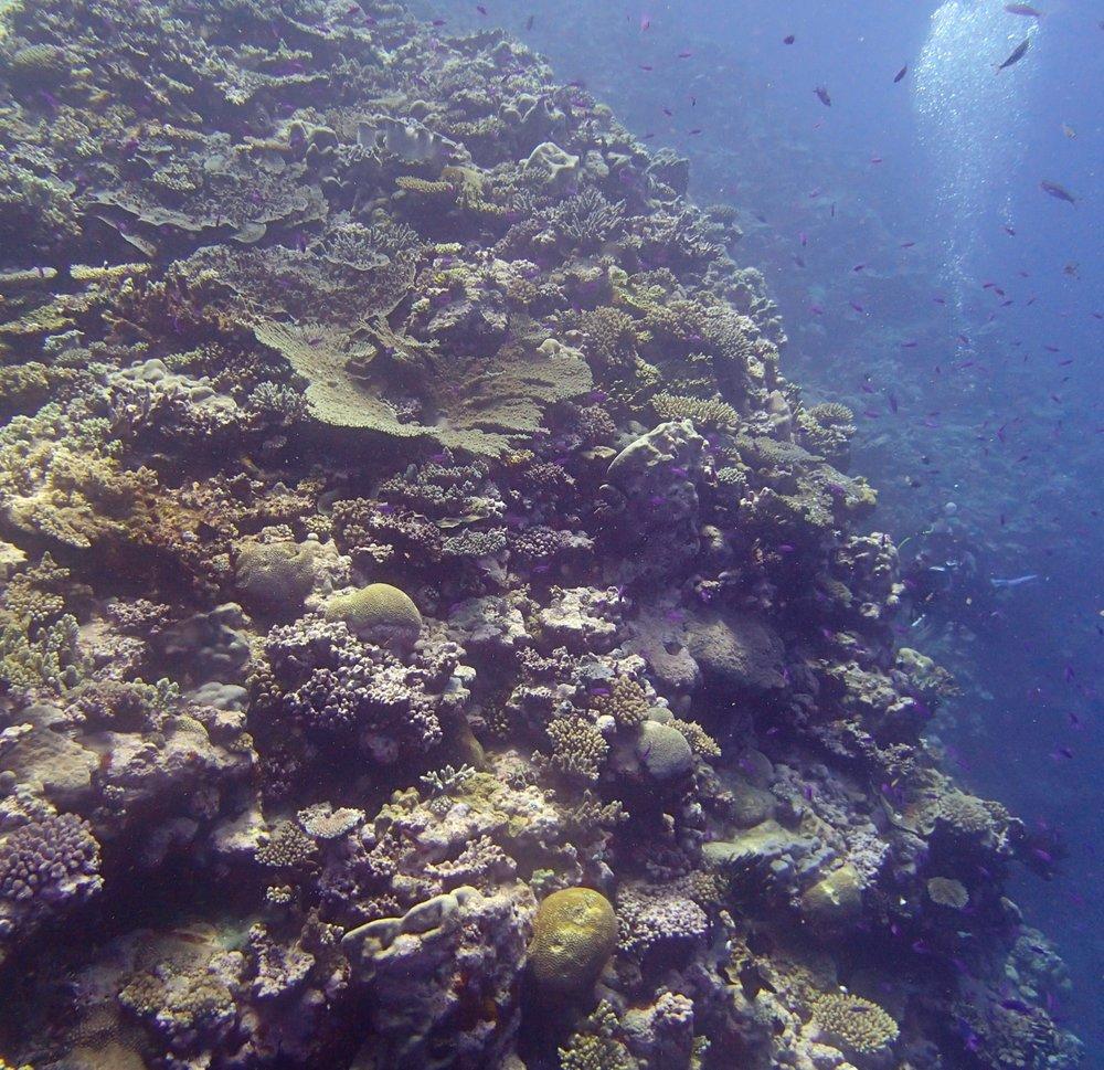 Huon Atoll.jpg