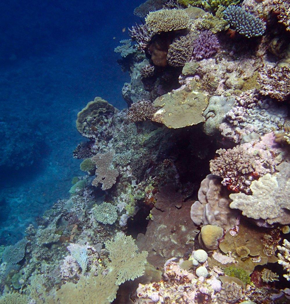 NCHU50 shallows.jpg